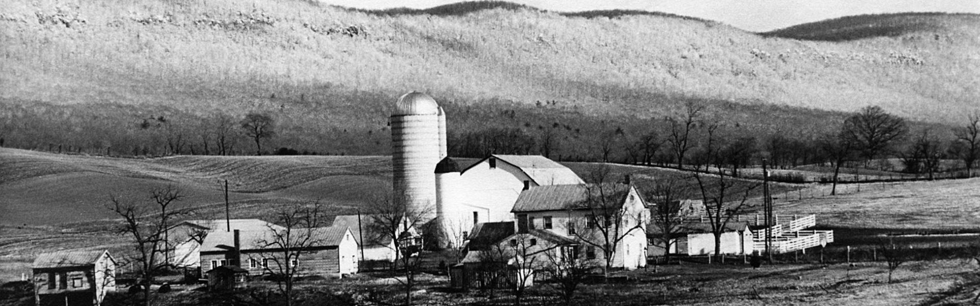 Blue Mountain Farm